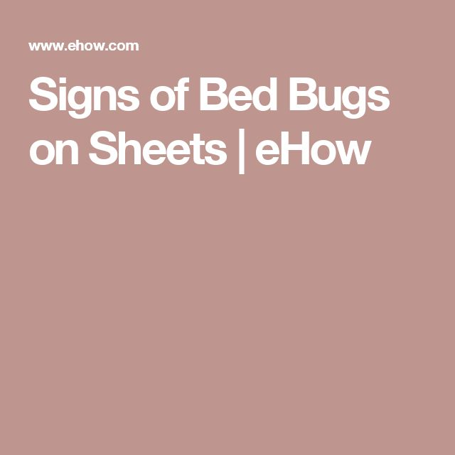 Signs of Bed Bugs on Sheets | eHow