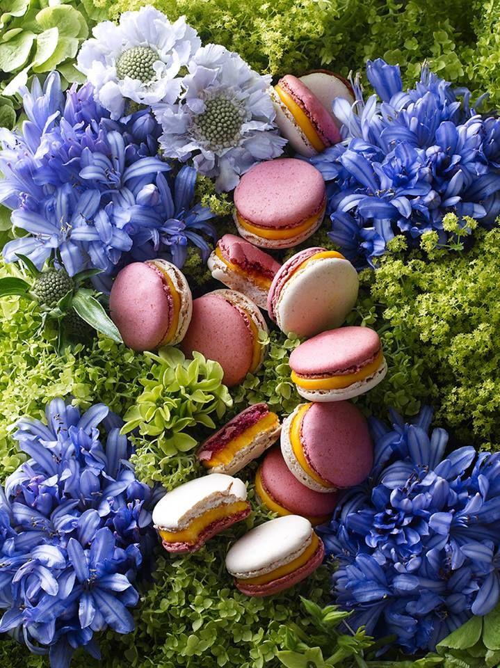 The Jardin d'Iris [Lapsang Souchong Tea, Saffron, Iris, Carrot & Violet] | Pierre Hermé, Paris