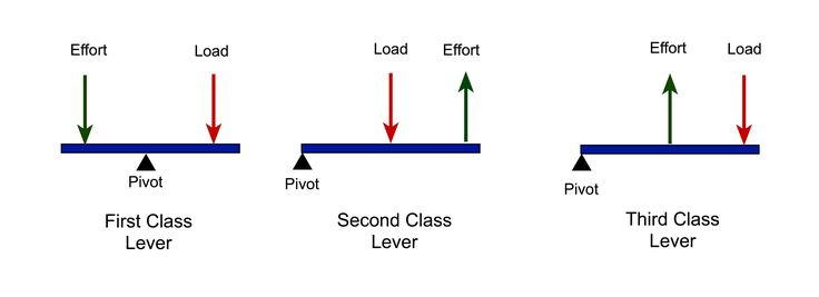 12 Best Levers Images On Pinterest Simple Machines 1st Grades And