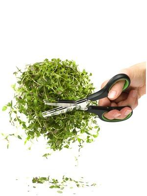 In store now, makes chopping herbs so much easier !