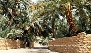 Al Ain Oasis Tour  Al Ain Oasis Tour represents the journey par excellence traversing the charming oasis which adorns the midpoint of the city of Al Ain in the emirate of Abu Dhabi of UAE.