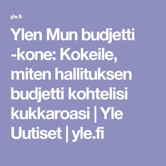 Ylen Mun budjetti -kone: Kokeile, miten hallituksen budjetti kohtelisi kukkaroasi | Yle Uutiset | yle.fi