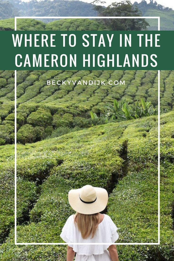 CAMERON HIGHLANDS RESORT REVIEW - The most luxurious hotel in the Cameron Highlands, Malaysia.
