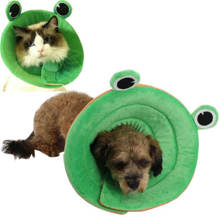 Where Can I Buy A Dog Cone Collar
