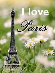 Image result for paris flag wallpaper