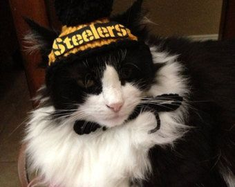 22 Best Images About Steelers Pet On Pinterest Custom