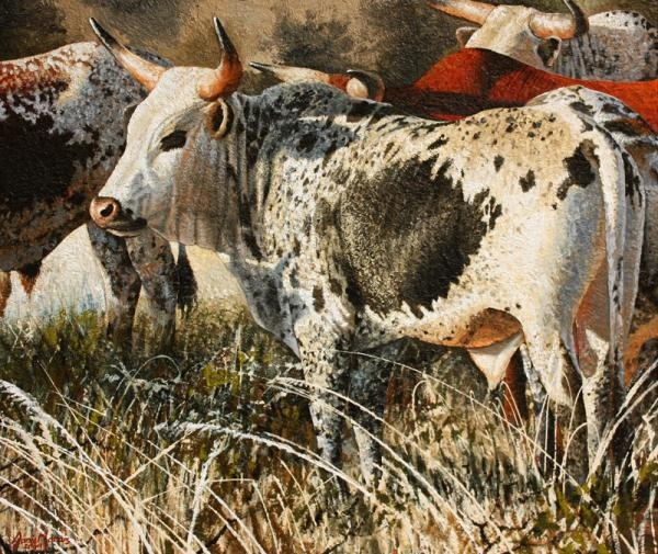 ALBUM - Danie Marais - Nguni Paintings - SOLD - ARTISTS GALLERY - House Of Art - Garsfontein, Pretoria