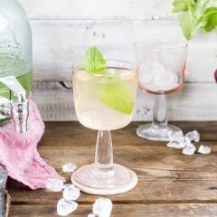 Holler-Spritz (Holunder-Schorle)  Holler Spritz bezeichnet spritzige Holunder-Schorlen-Mixe aus Weißwein, Holunderblütensirup & Zitrone. Oder wie der Österreicher zum Wein-Hugo-Getränk zu sagen pflegt: Kaiserspritzer!