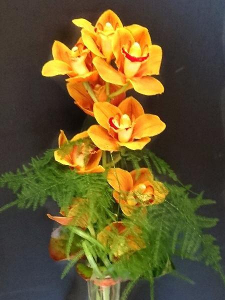 Orkidea  #orchid  Kukkia voi tilata myös verkkokaupasta http://meritorni.ekukka.fi
