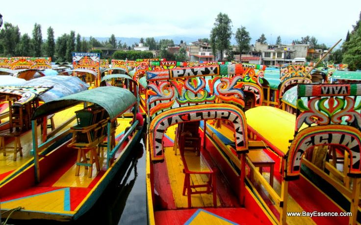 Las trajineras   Xochimilco's Floating Gardens   www.bayessence.com