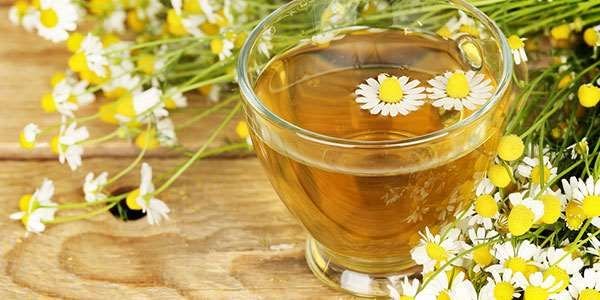 The 7 Benefits of Drinking Chamomile Tea