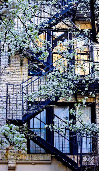 Balcony in Greenwich Village.