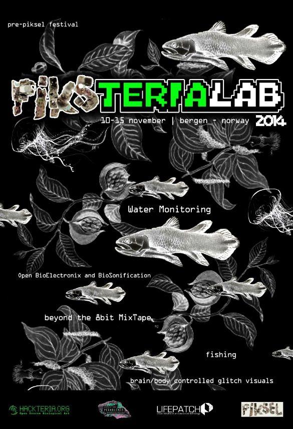 Posterpiksteria2014