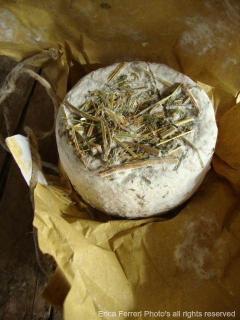 Pecorino cheese - pecorino stagionato in paglia e fieno