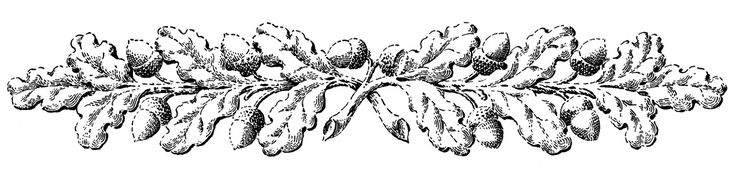 Vintage Fall Clip Art – Ornamental Oak Branches