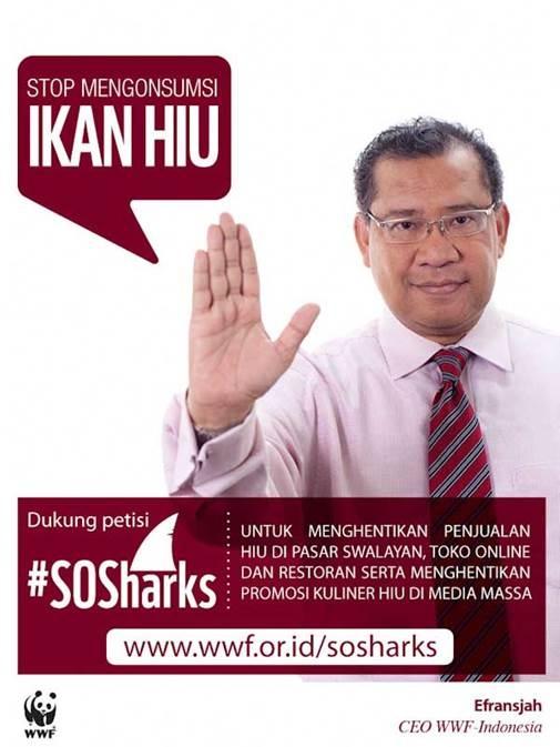 """""""Stop Mengkonsumsi Ikan Hiu"""" - Pak Efransjah"""