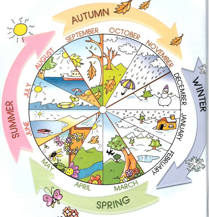 English vocabulary - seasons and months