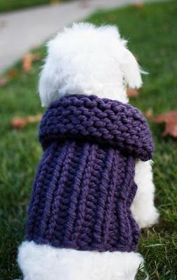 Knitting Pattern For Small Dog Clothes : Ribbed Sweater Dog Vest Free Knitting Pattern from the Pets Free Knitting Pat...