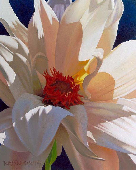 Brian davis oil on canvas http www briandavisart com · painting flowersflower paintingsart