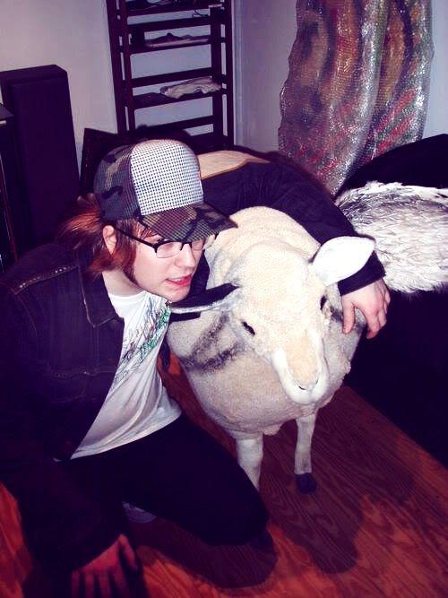 Patrick with the Infinity on High sheep<PreHiatus!Pat's hair was like, damn son