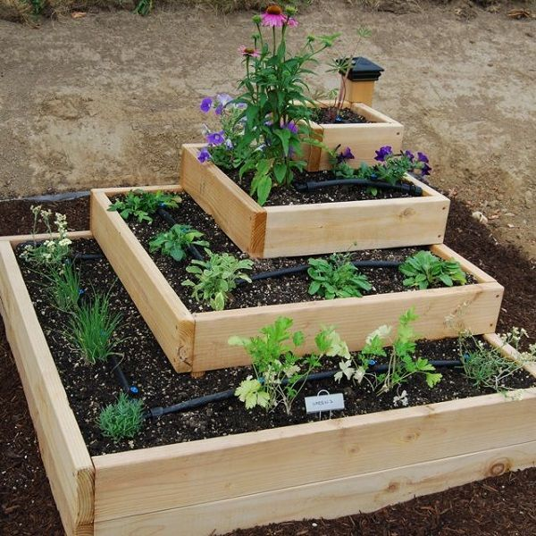 Raise Garden Bed for strawberries and herbs