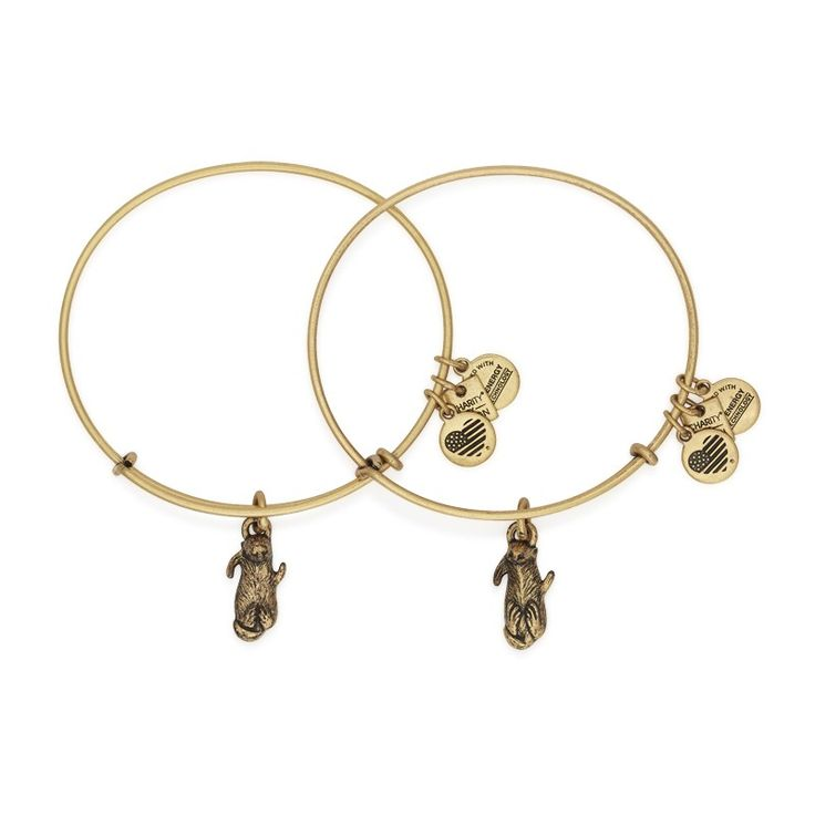 Side By Side Set of 2 Charm Bangles | ALEX AND ANI