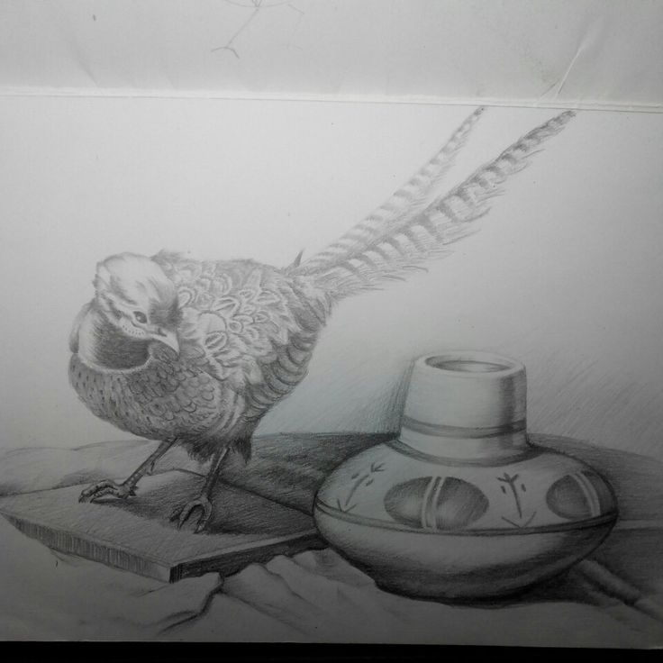 An old sketch of mine