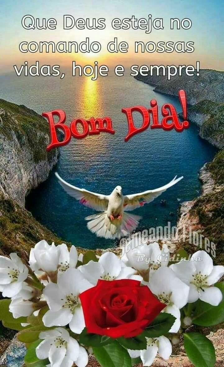Pin De Lucia Ferreira Em Bom Dia Boa Tarde Boa Noite Frases De