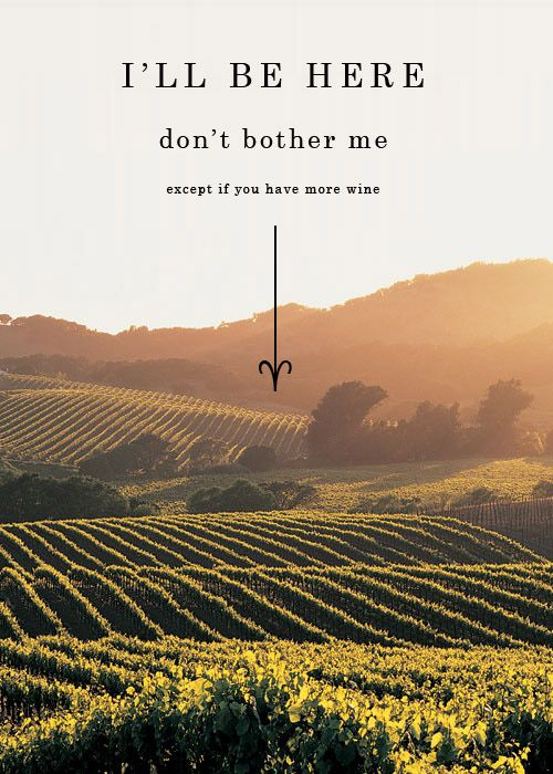 Don't bother me, I'm in Napa Valley ... except ...