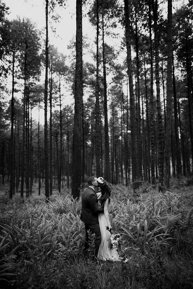 Forest Weddings in Magoebaskloof