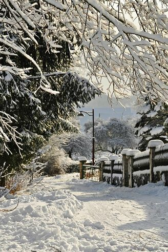 Soo beautiful i cant wait for christmas time and snow.i know im crazy - British…