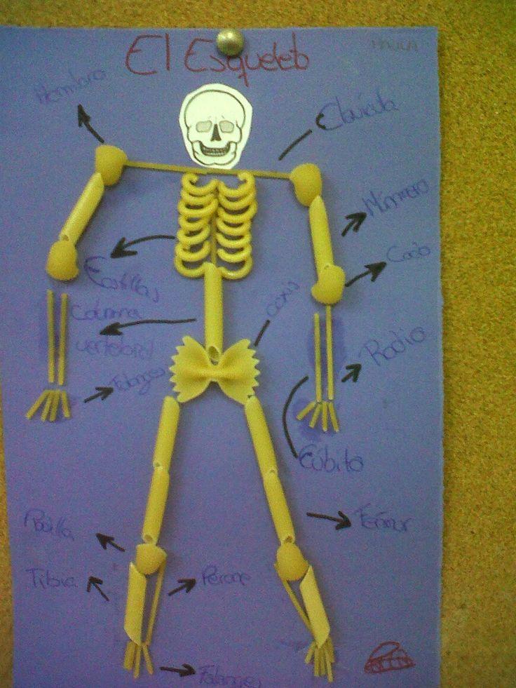 esqueleto con macarrones - Buscar con Google