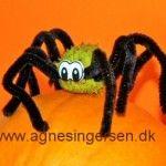 Lodden edderkop