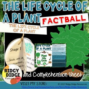 The Life Cycle of a Plant Factball and Comprehension Sheet Printable Activity #plantlifecycle #printableclassroom