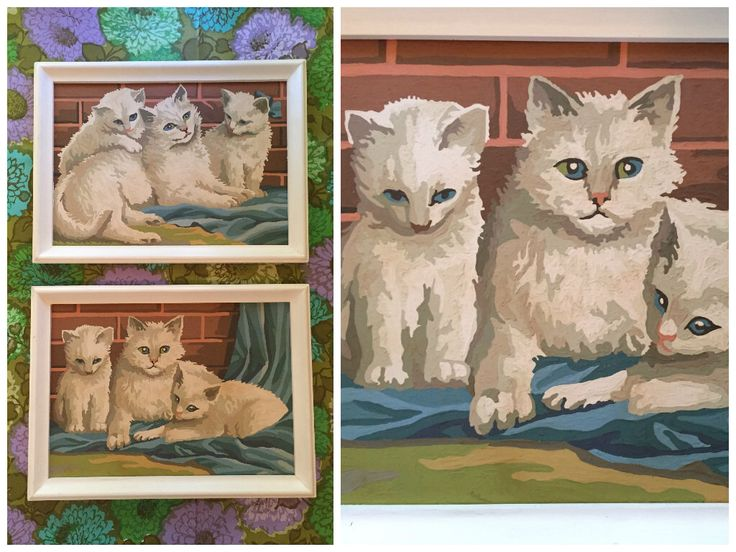 60's White Fluffy Kittens Paint-by-Numbers - A Pair of Adorable Cat Paintings - Framed by ElkHugsVintage on Etsy https://www.etsy.com/listing/245977175/60s-white-fluffy-kittens-paint-by