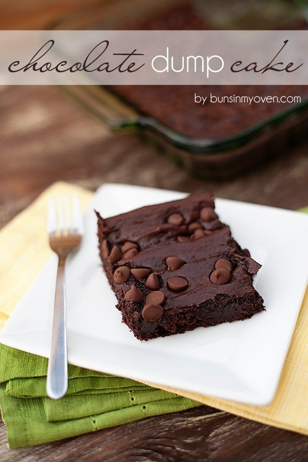 Cake from just 4 every day ingredients?! Chocolate Pudding Dump Cake #recipe by bunsinmyoven.com