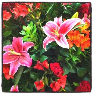 Flores no mall.