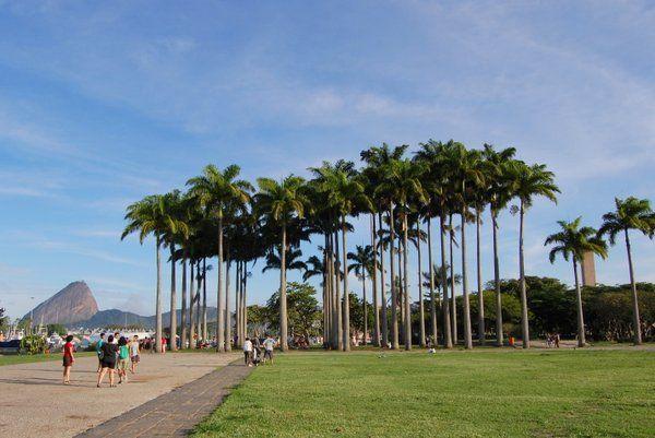 Parque do Flamengo también conocido como Aterro do Flamengo, de los preferidos por los cariocas para pasear y hacer deporte