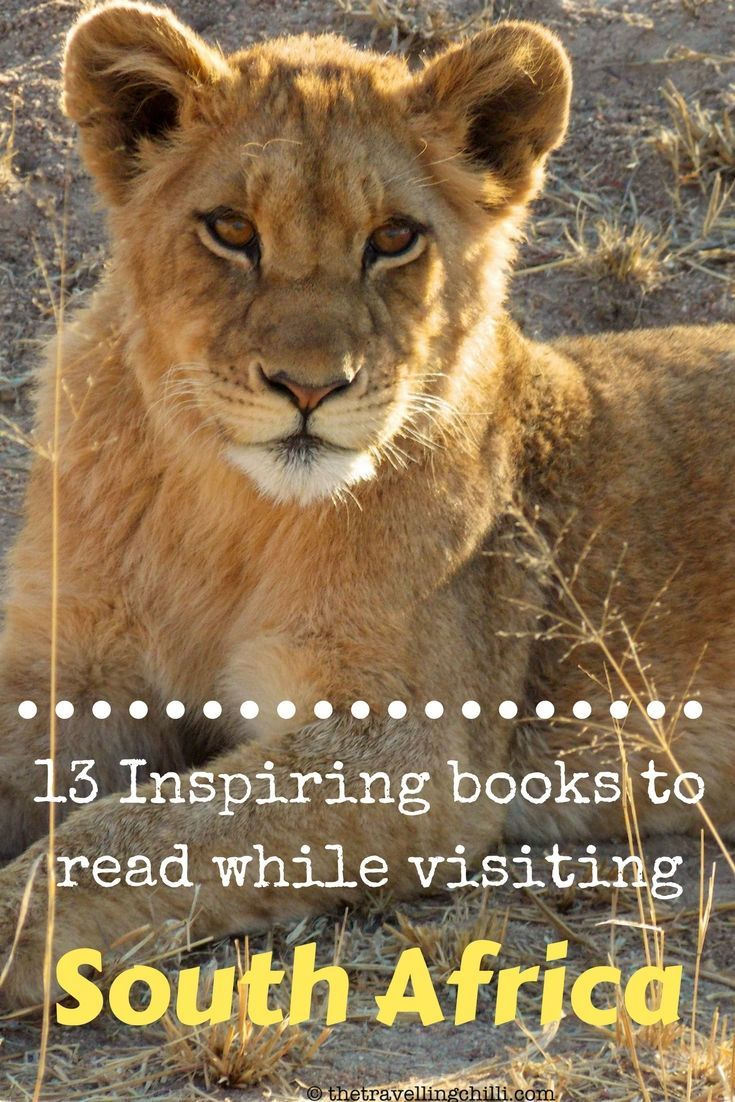 Read books about South Africa while visiting the country - 13 Inspiring books to read while visiting South Africa: