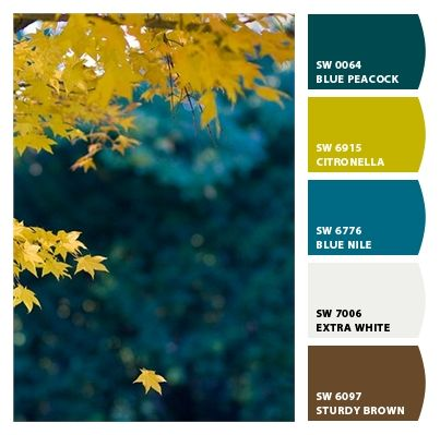 Paint colors from Chip It! by Sherwin-Williams jez house colors for front door, shutters, cushions.