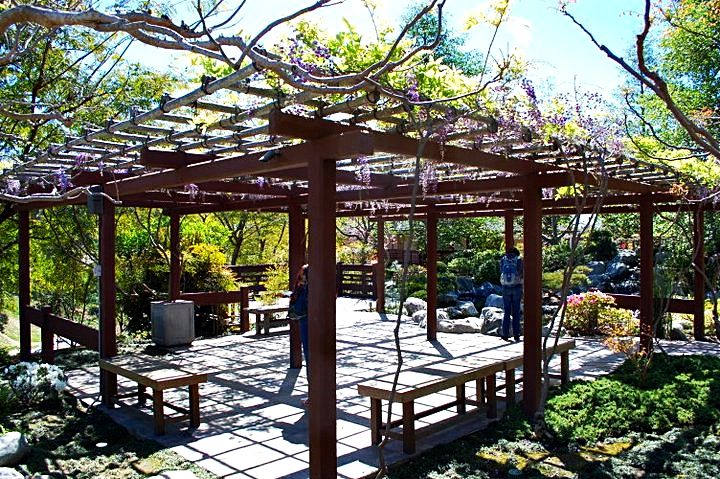 Japanese Friendship Gardens Balboa Park San Diego Ca The Japanese Friendship Garden Is An