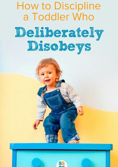 Toddler disobedience