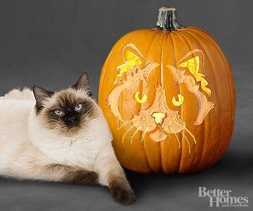 53 best cat o lanterns images on pinterest halloween for Cat carved into pumpkin