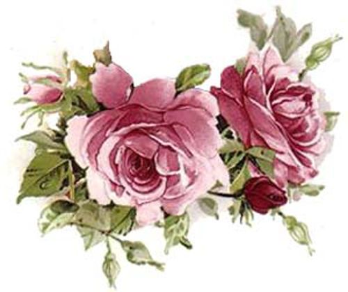 AMaZinG!! PinK TeA RoSeS & SWaGs ShaBby WaTerSLiDe DeCALs ~LaRGe~