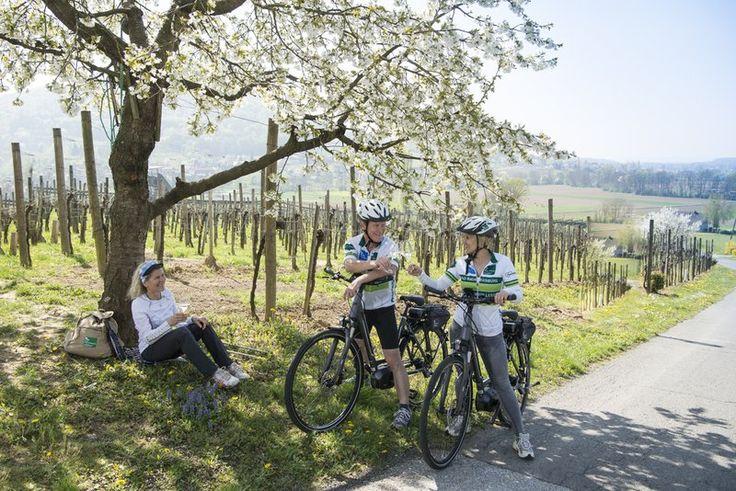Für sportlich Aktive, Weinliebhaber, Naturfreunde und alle, die sich einfach eine schöne Auszeit gönnen ist Tieschen der ideale Ort.  #Badradkersburg #Sport #Tieschen #Natur