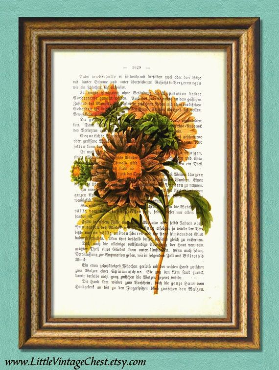 CHINESE ASTER  Flowers Dictionary art print by littlevintagechest, $7.99