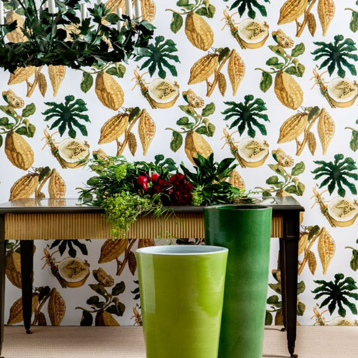Amazonia by Gaston Y Daniela #wallpaper #design #nature