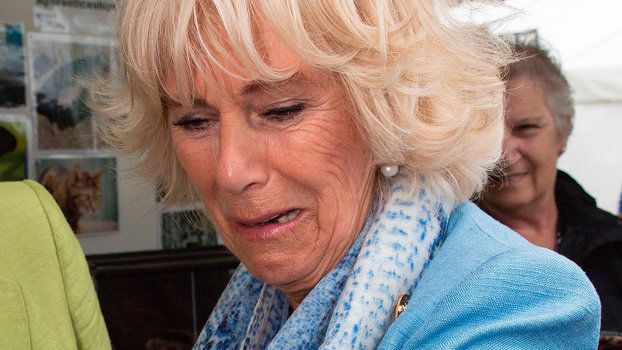 Camilla Parker Bowles Forced to Interact with a Giant Stick Bug Can't Deal