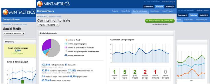Despre MintMetrics - SEO, Analytics, Social Media