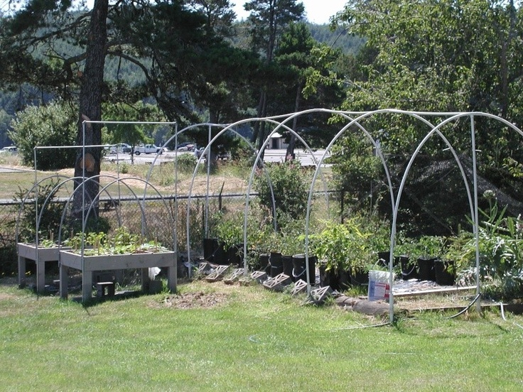 """i have successfully used deer netting. Mine happens to be wrapped around a 7 X 27 foot area that I use for my tomatoes. I used 20 ft PVC hoops to create the surround for the garden area. I also wrap each table top in deer netting using the covered wagon style hoops to support the deer netting. Deer netting is fairly inexpensive, very light weight, the posts will be more expensive than the netting. A roll of netting 7 ft high by 100 ft long was about $25."""